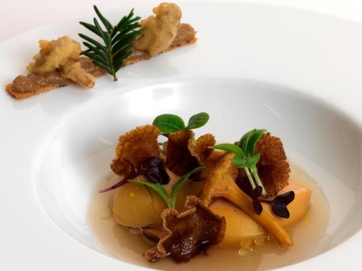 Foie gras aux chanterelles 007 - Copy.jpg