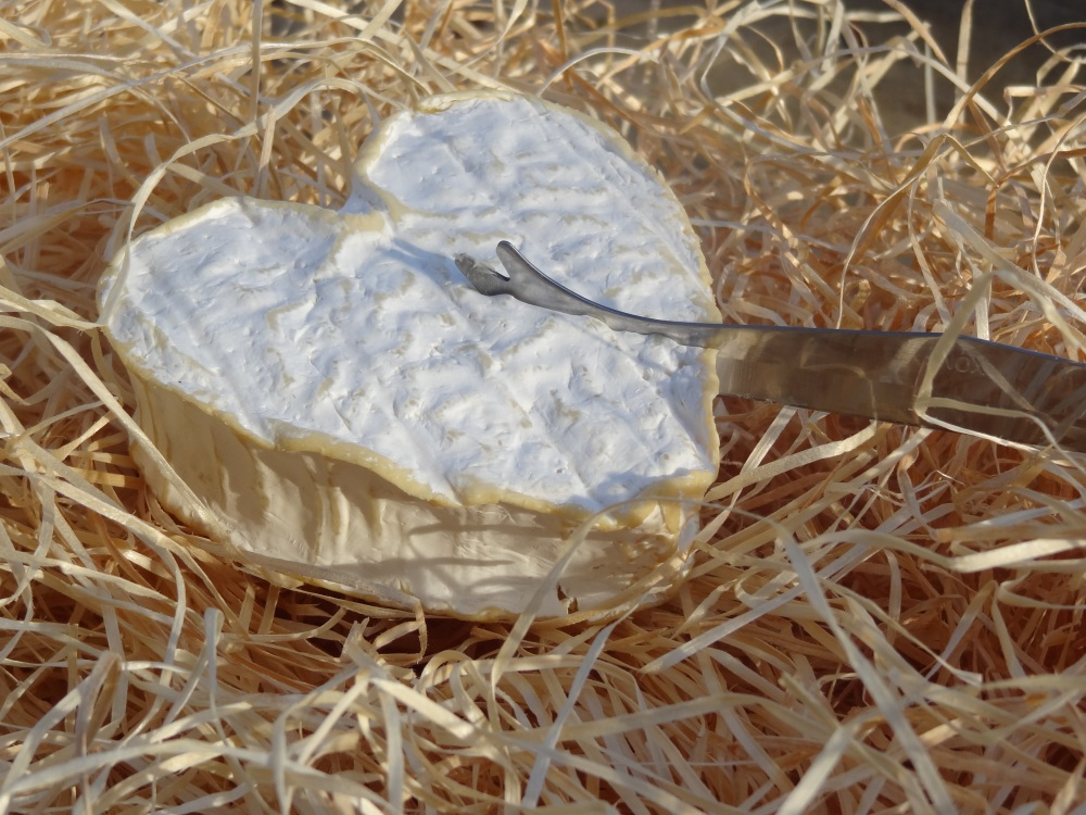 Fromage Neufchatel © D. Dumas Normandy Tourist Board