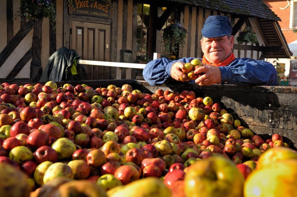 3776-Beuvron-en-Auge Fête du Cidre et de la Pomme (c) Philippe DENEUFVE-© Philippe Deneufve.jpg
